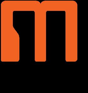 Multiverse Studio logo